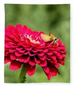 Dahlia's Moth Fleece Blanket