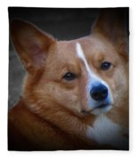 Daisie Our Corgi Fleece Blanket