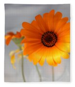 Daisies 4 Fleece Blanket