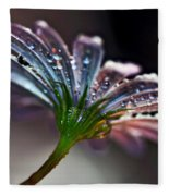 Daisy Abstract With Droplets Fleece Blanket