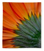 Daisy Delight Fleece Blanket