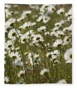 Daisy Fields Forever - Alabama Wildflowers Fleece Blanket