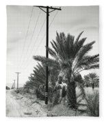 Date Palms On A Country Road Fleece Blanket