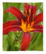 Day Lilly In Diffused Daylight Fleece Blanket
