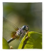 Dazzling Blue Skimmer Fleece Blanket