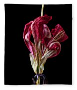 Dead Dried Tulip Fleece Blanket
