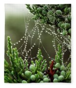 Decorated Bush Quogue Wildlife Preserve Fleece Blanket