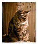 Deep In Kitty Thought Fleece Blanket