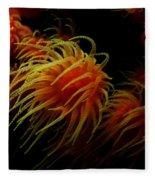 Deep Ocean Coral Polyp Fleece Blanket