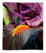 Deep Purple Fleece Blanket