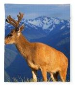Deer With Antlers, Mountain Range In Fleece Blanket