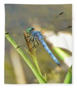 Delicate Dragonfly Fleece Blanket