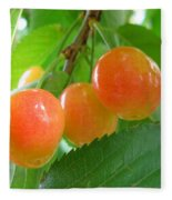 Delicious Plums On The Branch Fleece Blanket