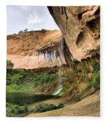 Demon Canyon Fleece Blanket