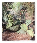 Desert's Collection Of Dried Flowers 3 Fleece Blanket