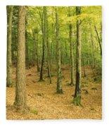 Devils Glen Woods, County Wicklow Fleece Blanket
