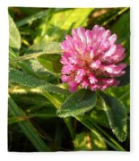 Dew Covered Clover Blossom Fleece Blanket