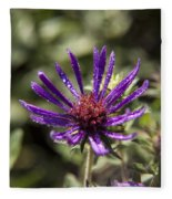Dewy Purple Fleabane Fleece Blanket