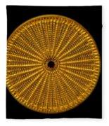 Diatom Alga, Arachnoidiscus Fleece Blanket