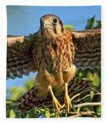 Digitally Enhanced Image, Painterly Fleece Blanket