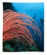 Divers And Whip Coral Fleece Blanket