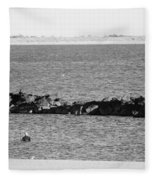 Diving Coney Island In Black And White Fleece Blanket