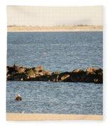 Diving Coney Island Fleece Blanket