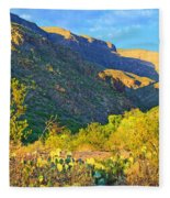 Dog Canyon Nm Oliver Lee Memorial State Park Fleece Blanket