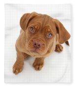 Dogue De Bordeaux Puppy Fleece Blanket