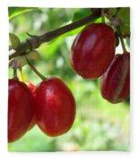 Dogwood Cornus Mas Berries Fleece Blanket
