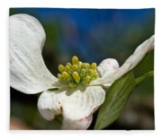 Dogwood Bloom Fleece Blanket