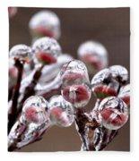 Dogwood Blooms - Sealed In Ice Fleece Blanket