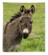 Donkey - The Beast Of Burden Fleece Blanket
