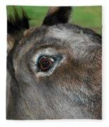 Donkey Stink Eye Fleece Blanket