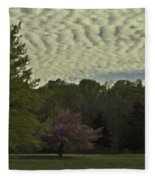 Douglassville Delight Fleece Blanket