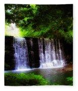 Dove Lake Falls Fleece Blanket