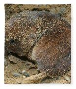 Down Right Dirty Mole Fleece Blanket