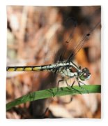 Dragonfly Closeup Fleece Blanket