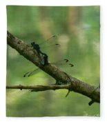 Dragonfly Hanky Panky Fleece Blanket