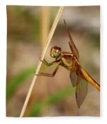 Dragonfly Looking At You Fleece Blanket