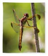 Dragonfly Photo - Yellow Dragon Fleece Blanket