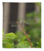 Dragonfly Smile Fleece Blanket