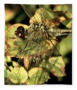 Dragonfly Wingspan Fleece Blanket