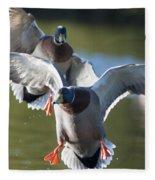 Dramatic Ducks Fleece Blanket