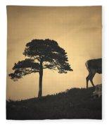 Dreaming Of Tomorrow Fleece Blanket