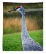 Dreaming Sandhill Crane Fleece Blanket