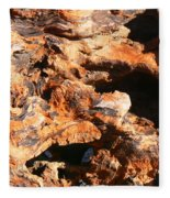 Driftwood 2 Fleece Blanket