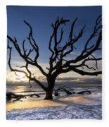 Driftwood Beach At Dawn Fleece Blanket