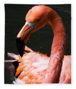 Drool Fleece Blanket