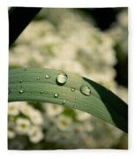 Droplets Fleece Blanket